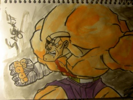 Street Fighter Sagat by quakesshakes