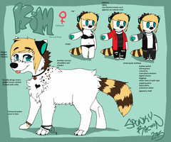 Kim Reference Sheet by SpunkyRacoon