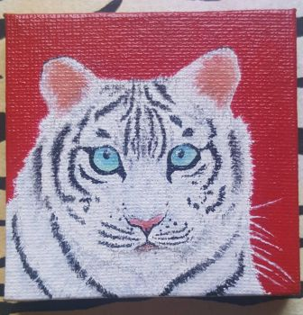 Little white tiger by CaptainBeth