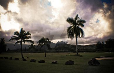 Hawaiian Golf Course. by asleavesfall