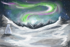 Boreal Night by PezZcado