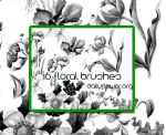 16 ps floral brushes by creativesplash