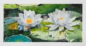 Waterlilies by In13