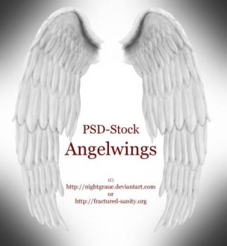 Angelwings - PSD Stock by nightgraue