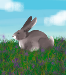 Bunny by JShipArts