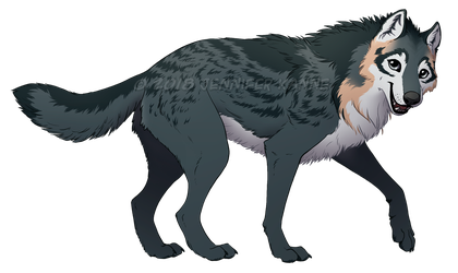 Wolf - Maia ref by OnyxSerpent