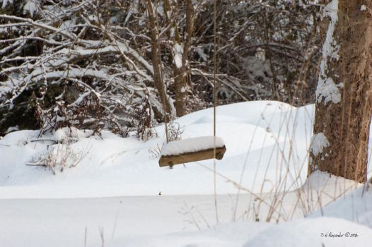 Swing in the Snow by UrbanRural-Photo
