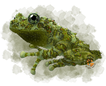 Portrait Commision - Mossy Frog by ArtbyWhatTheFox