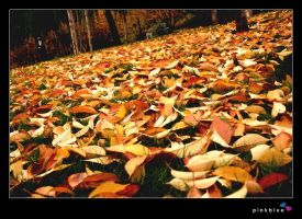 autumn_8 by pinkblue