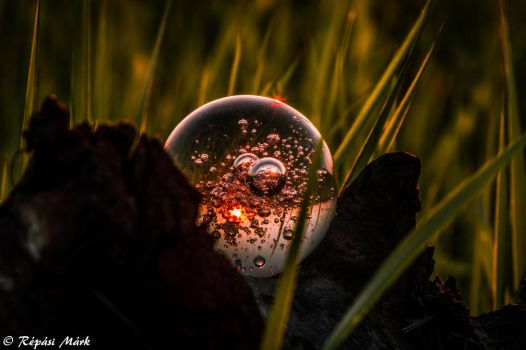 Glass drop in sunset by Arlen-McTaranis