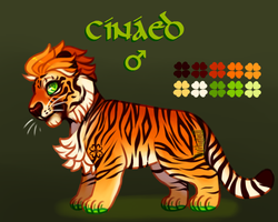 Cinaed Chibi Tiger [Design] by GreaserDemon