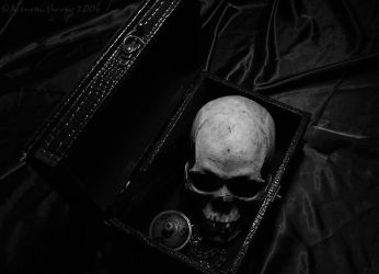 Still Lifeless by Aleuranthropy