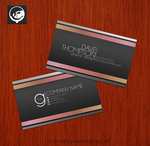 Free Business Card PSD Download by EdenEvoX
