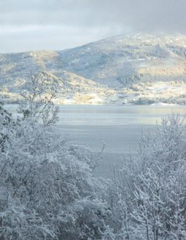 Winter Morning View by ToveAnita