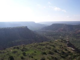 Palo Duro Morning by KronkSFH