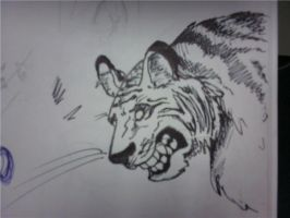 Awesome Tiger Sketch by fly-tiger
