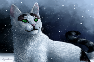 Winter by Nat-4rts
