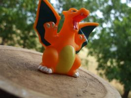 Charizard by Bloodthirstwolf