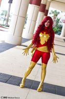 Dark Phoenix 14 by Insane-Pencil