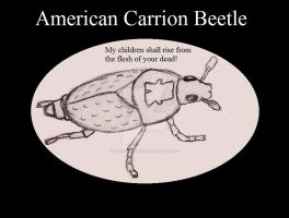 American Carrion Beetle, Insect Buddies series 2 by UnicronHound