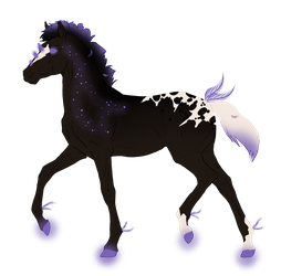 N3812 Padro Foal Design for AshTheDreamer by Mimi-McG