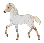 N2842 Padro Foal Design by casinuba