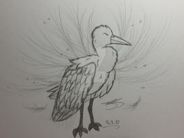 A majestic bird. by Bellelina-64