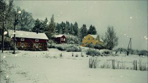 Heavy Snowfall In This Morning On January 11    by eskile