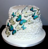 Butterfly Cake by KirstysCakes
