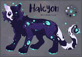 OC: Halcyon by c-Chimera
