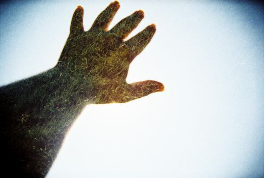 A Green Hand by Sajextryus