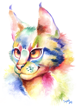 Rainbow cat by Siplick