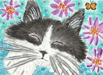 cat  face watercolor  aceo painting by tulipteardrops