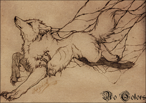 AT.: Wolf.:.No Color: by WhiteSpiritWolf