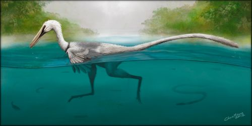 Swimming Raptor by ChrisMasna