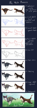 My Drawing Process by drawingwolf17