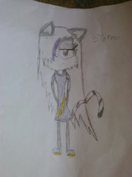 Storm The Cat POSTED!!!! :D by wolfsrock777