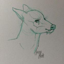 Tufted deer sketch by DenimBirdie