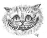 Cheshire Cat by raya2222