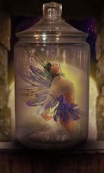 fairy in the jar by chevronguy