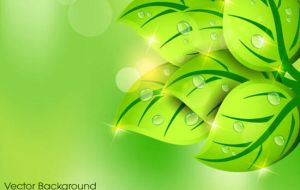 Green leaves in spring background vector by vectorbackgrounds