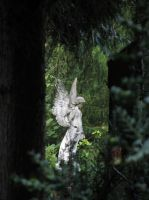 Bergfriedhof 1 by GothIce
