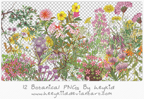 12 Botanical PNGs By heeykiid by heeykiid
