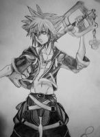 Sora - Kingdom Hearts II by NekoPhantomhive