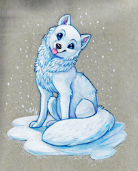 Arctic fox by Skeleion