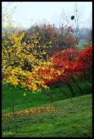 Gorgeous Fall III by iuli72an
