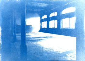 Cyanotype by crazy-phake