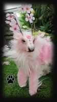 SOLD Anter the bloom caribou poseable artdoll by CreaturesofNat