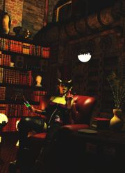 Awesome Library by magicclam