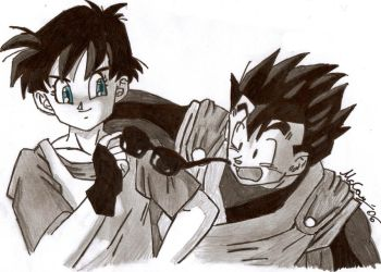 Gohan and Videl by mmcfacialhair